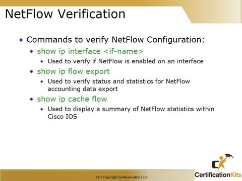 Cisco CCNA NetFlow Verification