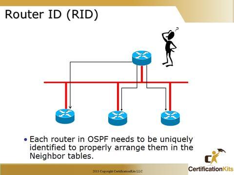 Cisco CCNA OSPF RID
