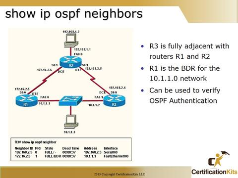 Cisco CCNA OSPF Neighbors