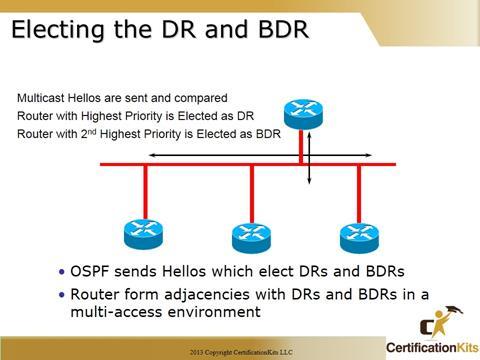 Cisco CCNA OSPF DR