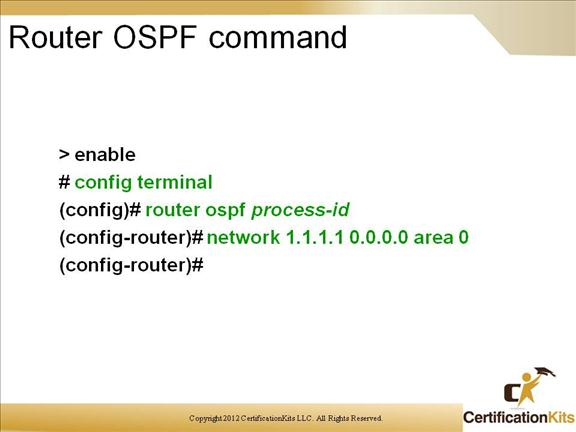 cisco-ccnp-route-ospf-1