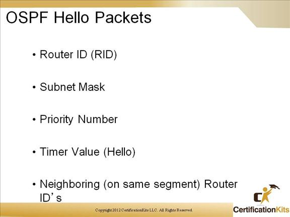 cisco-ccnp-route-ospf-8