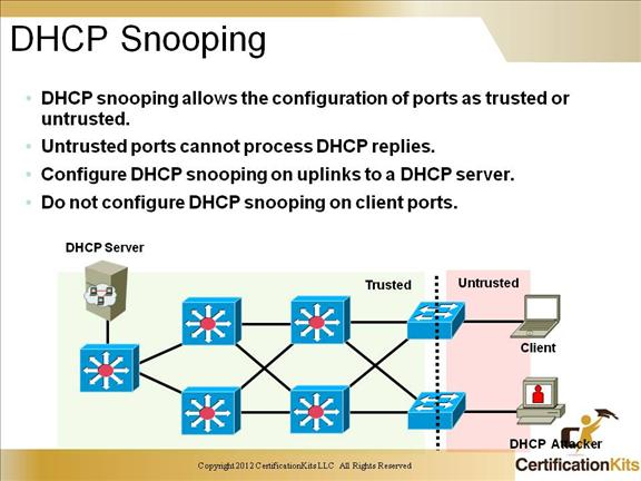 ccnp-switch-security-dhcp-2